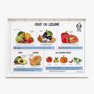 poster fruit legume ecole