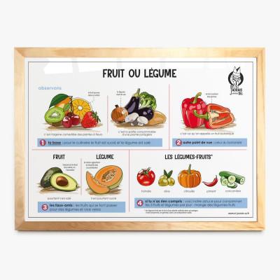 affiche ecole fruit legume