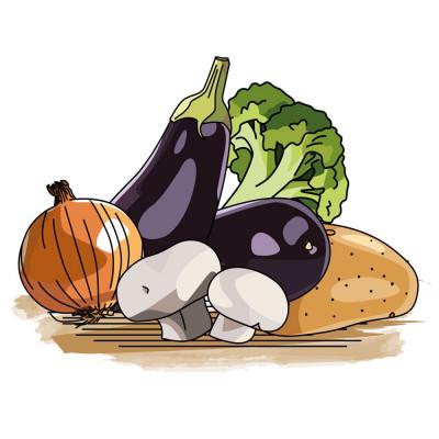 poster pedagogique legume